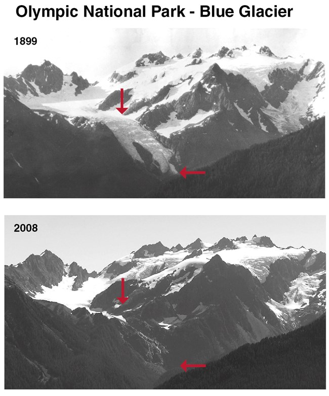 Photographs taken in 1899 and 2008 show thinning and retreat of the Blue Glacier on Mount Olympus, Olympic National Park, WA. Photos: NPS