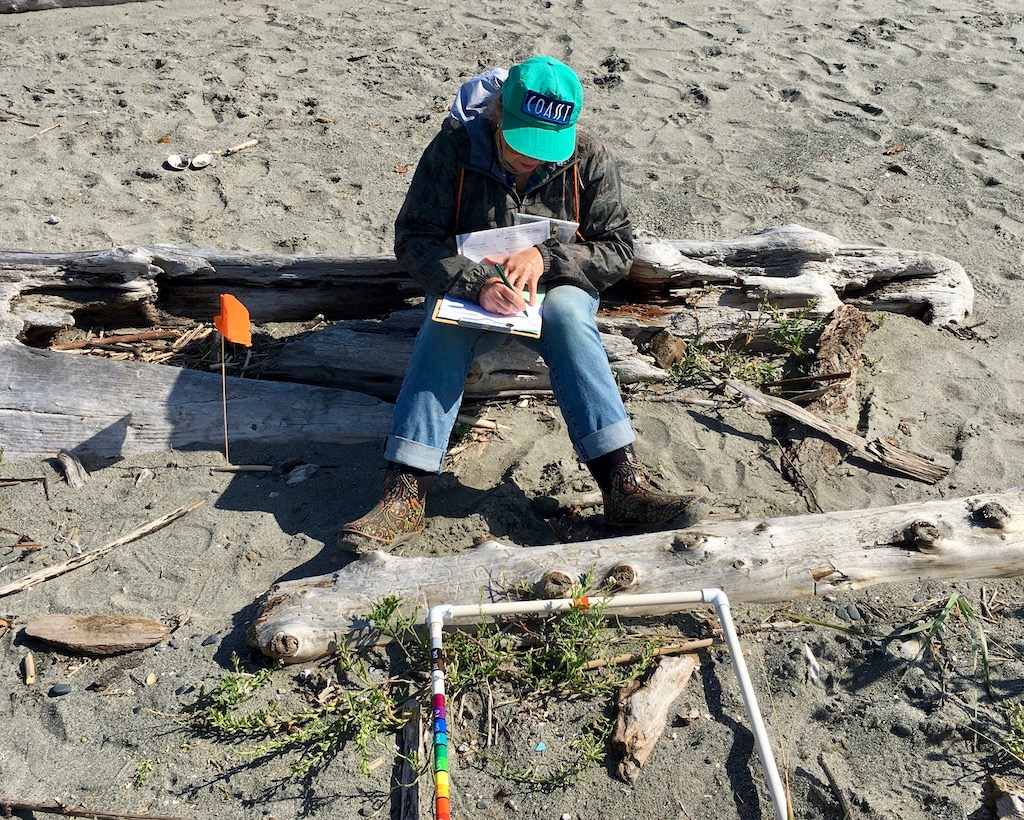 The COASST marine debris project depends on citizen science volunteers to collect data. Photo: Eric Wagner