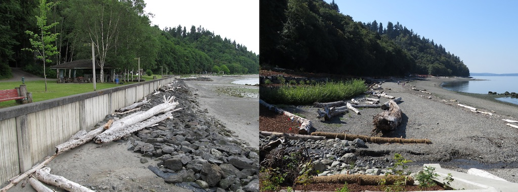 Seahurst Park before removal of seawall (left) and after restoration of beach and wetland (right). Photos: EcologyWA (CC BY-NC 2.0)