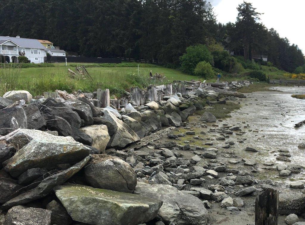 Shoreline armoring at Sunlight Shores in Island County. Photo: Jim Johannessen/Coastal Geologic Services. https://flic.kr/p/2hAgkpB (CC BY-NC 2.0)