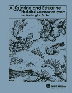 1990 publication cover
