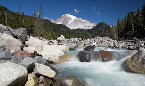 The Nisqually River flows away from the peak of Mt. Rainier in Mt. Rainier National Park.
