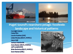 Puget Sound's nearshore pelagic foodweb: landscape and historical patterns