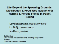 distribution & food web relations of herring & forage fishes in Puget Sound