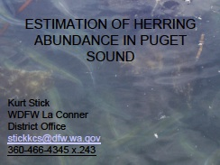 Estimation of herring abundance in Puget Sound