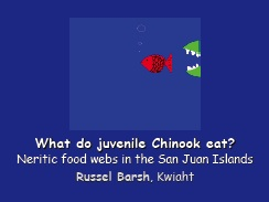 What do juvenile Chinook eat? Neritic food webs in the San Juan Islands