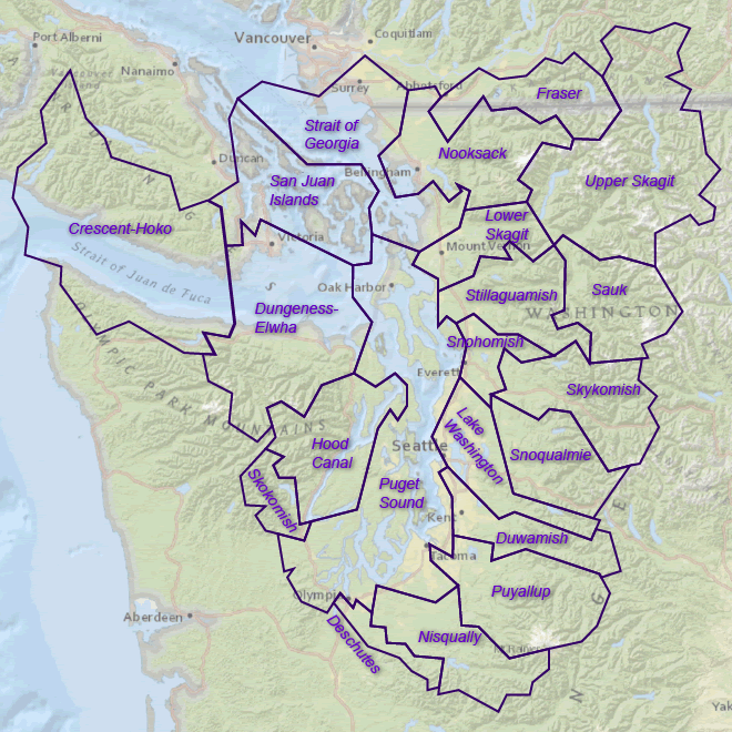 map showing the 21 watershed sub-basins in Puget Sound