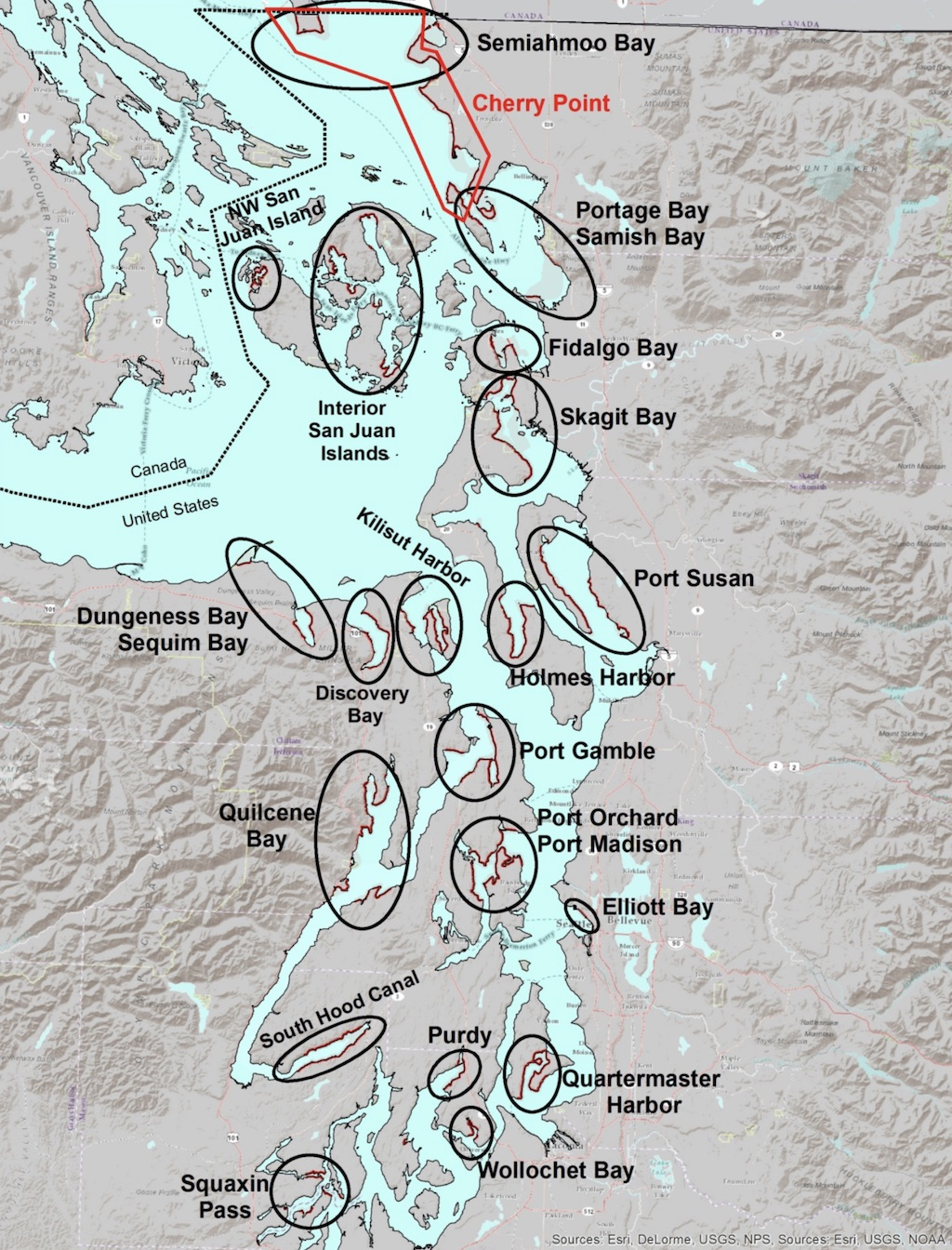 Map showing documented Puget Sound herring spawning grounds in 2012. Map: WDFW.