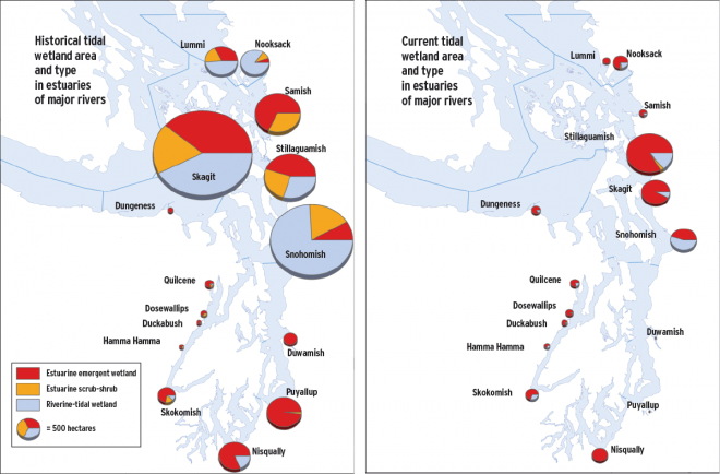 Loss of historical habitat types in Puget Sound. Image: Collins 2006.