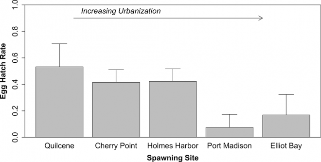 Preliminary results showing hatch rates of Puget Sound Pacific herring embryos, across a gradient of urbanization. Embryos were collected from herring spawning sites in Puget Sound, then incubated in the laboratory. Error bars represent 2 S.E.s of the mean of hatch rates across 8 incubation tanks for each site.