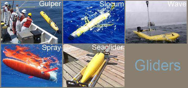 Photo montage of a variety of AUVs. Courtesy of IOOS