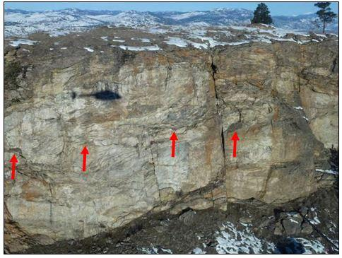 Golden eagle nesting cliff in Okanogan County; red arrows indicate four nests present in the frame (photo by Jeff Heinlen, WDFW).