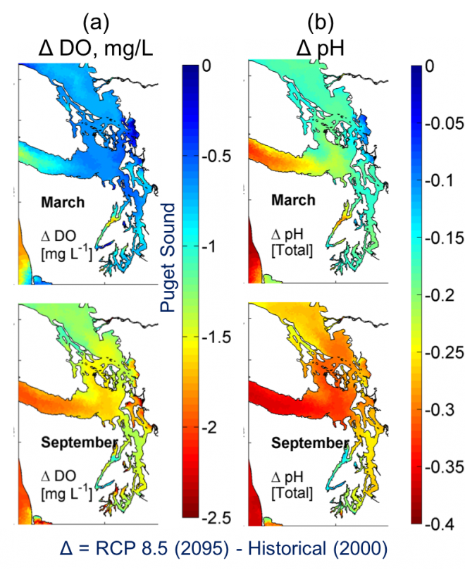 Predicted annual average Δ in surface temperature and salinity over (a) the entire Salish Sea domain, as well as (b) in the nearshore intertidal regions of the Snohomish River estuary (see Khangaonkar et al. 2019 for details)