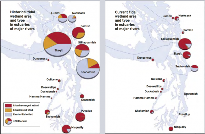Loss of historical habitat types in Puget Sound (Collins, 2006)