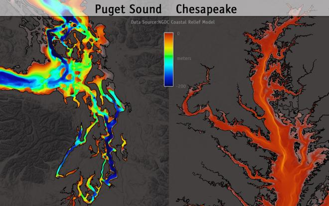 Comparative bathymetry for Puget Sound and Chesapeake Bay. Data source: National Geographic Data Center; Image courtesy: UW Center for Environmental Visualization