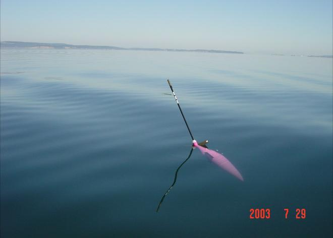A seaglider in the water. Photo courtesy University of Washington.