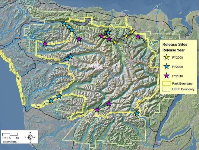 Figure 2. Release locations for fishers (n=90) in Olympic National Park in 2008 (yellow stars), 2009 (blue stars), and 2010 (purple stars).