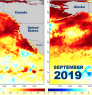 In 2014 and 2019, sea surface temperatures across a broad area warmed to well above average (0 in the middle of the key). On map, 3° C = 5.4° F // Map: NOAA Fisheries