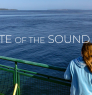 Image from State of the Sound Report website