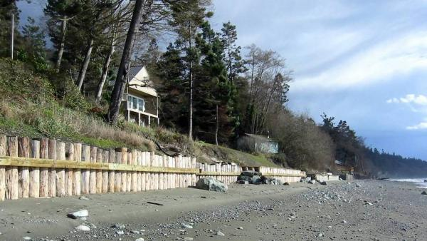 Timber pile bulkheads at Ledgewood Beach on Whidbey Island. Photo: Washington Department of Ecology https://flic.kr/p/mUeFc (CC BY-NC-ND 2.0)