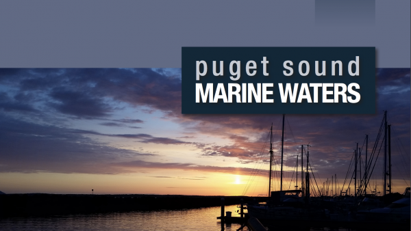 Puget Sound marine Waters 2016 report cover