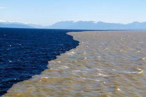 A sharp boundary appears as sediment-laden freshwater is discharged from British Columbia's Fraser River into the Salish Sea. Fresh water, which is less dense than salt water, spreads in a shallow (approximately 1 m deep) plume at the sea surface. Photo: Ed McNichol, Ocean Networks Canada (CC BY-NC-SA 2.0) https://www.flickr.com/photos/oceannetworkscanada/8711686267