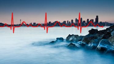 Heartbeat line overlays Seattle Skyline from Alki Beach. Graphic: Puget Sound Institute w/ copyrighted images