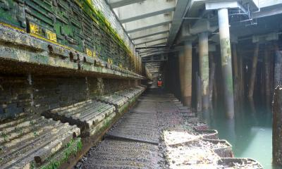 The new Seattle seawall below the sidewalk at low tide. Photo: Jason Toft/UW