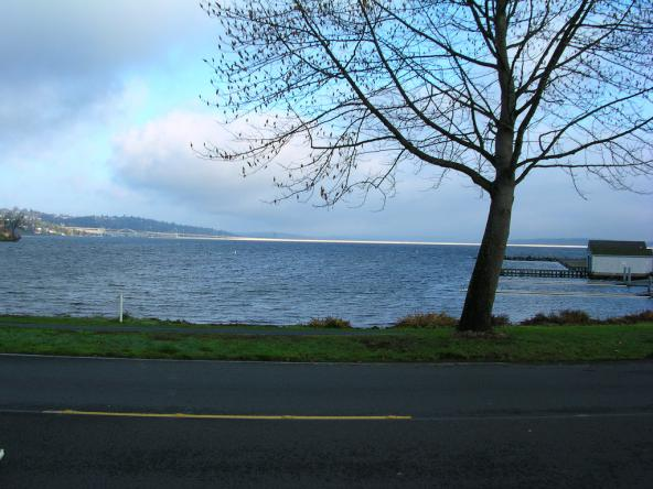 2003 Seattle Marathon - Seward Park Photo: J Brew (CC BY-SA 2.0) https://www.flickr.com/photos/brewbooks/1282527696
