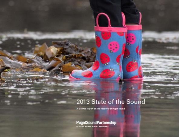 2013 State of the Sound report cover
