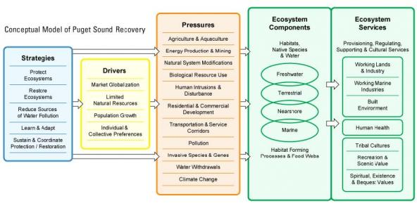 Figure 1.  General Conceptual Model of Puget Sound Recovery (page 2).