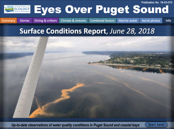 Eyes Over Puget Sound: Surface Conditions Report – June 28, 2018