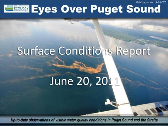 Eyes Over Puget Sound: Surface Conditions Report - June 20th, 2011