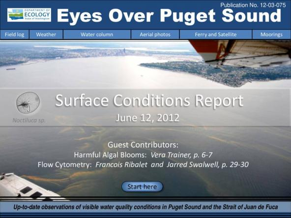 Eyes Over Puget Sound: Surface Conditions Report - June 12, 2012