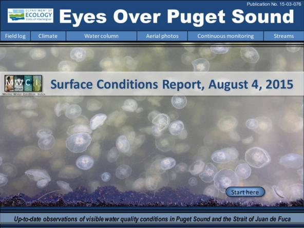 Eyes Over Puget Sound: Surface Conditions Report – August 4, 2015