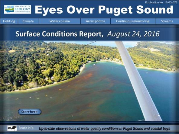 Eyes Over Puget Sound: Surface Conditions Report – August 24, 2016
