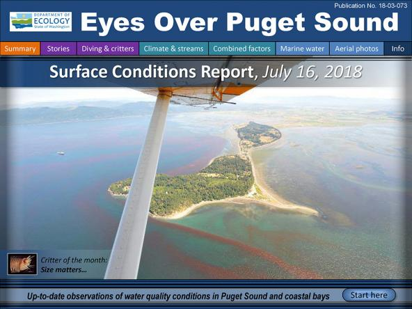 Eyes Over Puget Sound: Surface Conditions Report - July 16, 2018