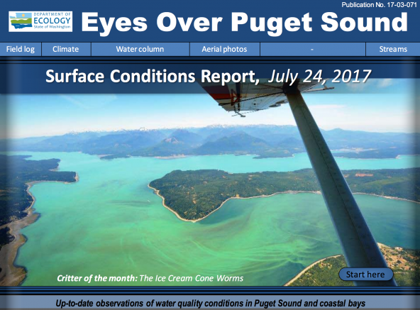 Eyes Over Puget Sound July 2017 report cover