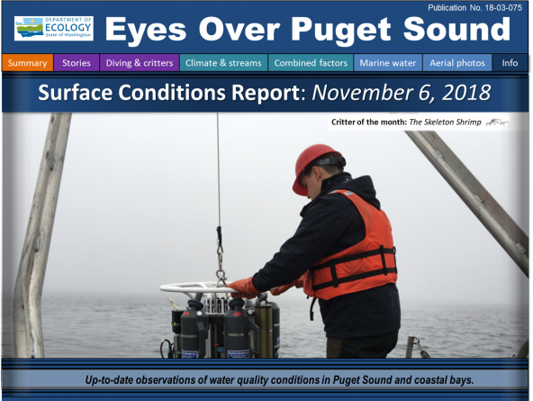 Eyes Over Puget Sound: Surface Conditions Report - November 6, 2018