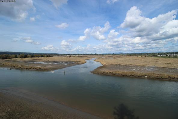 The Qwuloolt estuary hydrology restored by breaching a century old levee. WRP easement land in the foreground. Photo: USDA