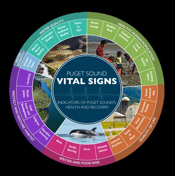 Puget Sound Partnership Vital Sign wheel