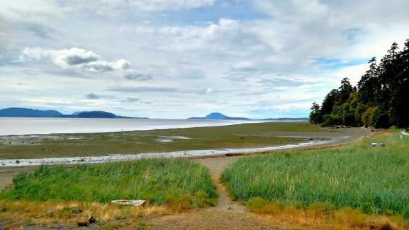 Estuarine habitat of the Skagit River Delta looking toward Orcas Island. Photo: Scott Smithson (CC BY-NC-ND 2.0) https://www.flickr.com/photos/dtwpuck/28184330406