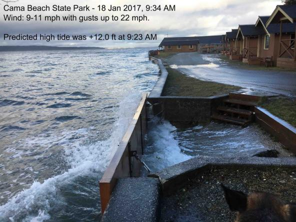 King tide at Cama Beach State Park, Jan 18, 2017. Photo: ConwaySuz (CC BY-NC-ND 2.0) https://www.flickr.com/photos/15606681@N03/32671342575