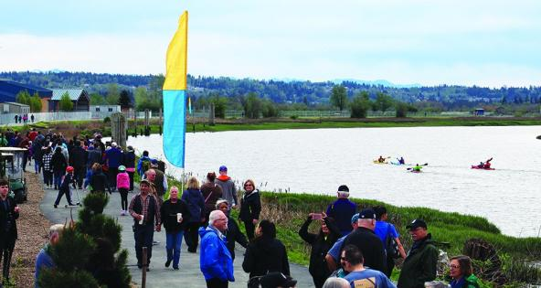 Ebey Waterfront trail opens along Qwuloolt Estuary. Photo: Kalvin Valdillez, Tulalip News