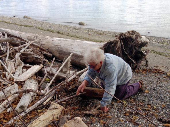 Pat Collier digs down into her upper beach, where driftwood provides a home for tiny invertebrates that feed a variety of fish and birds. Photo: Christopher Dunagan/Puget Sound Institute