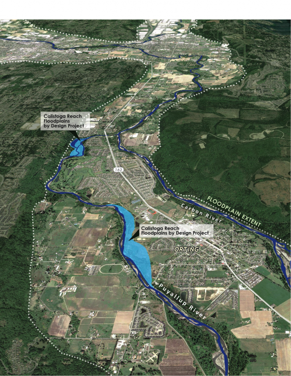 Map of the Calistoga Reach restoration project. Completed in 2014, it has already prevented Puyallup River flooding in the City of Orting. Graphic courtesy: Floodplains by Design.
