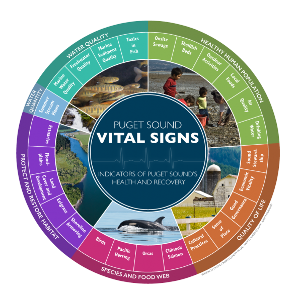 As of 2016, the Puget Sound Vital Signs wheel shows 25 vital signs organized into five categories. Diagram: Puget Sound Partnership