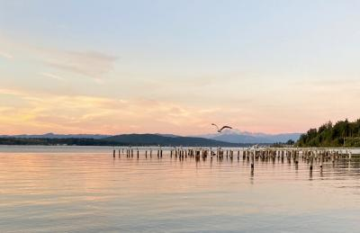 Salish Sea with Mt Baker in the background