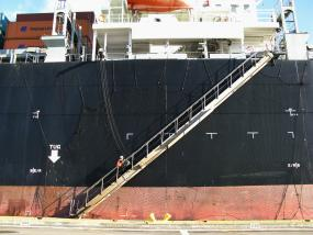 A state inspector boards a container ship at the Port of Seattle to check on ballast water and determine whether procedures were followed to reduce the risk of invasive species being released into Puget Sound.  Photo: WDFW