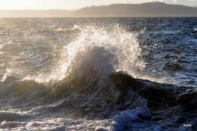 Waves crashing on the Puget Sound Photo: MikeySkatie (CC BY-SA 2.0) https://www.flickr.com/photos/mikeyskatie/5473869676